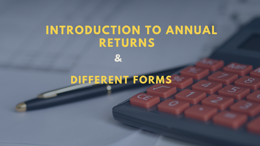 Intro to annual return